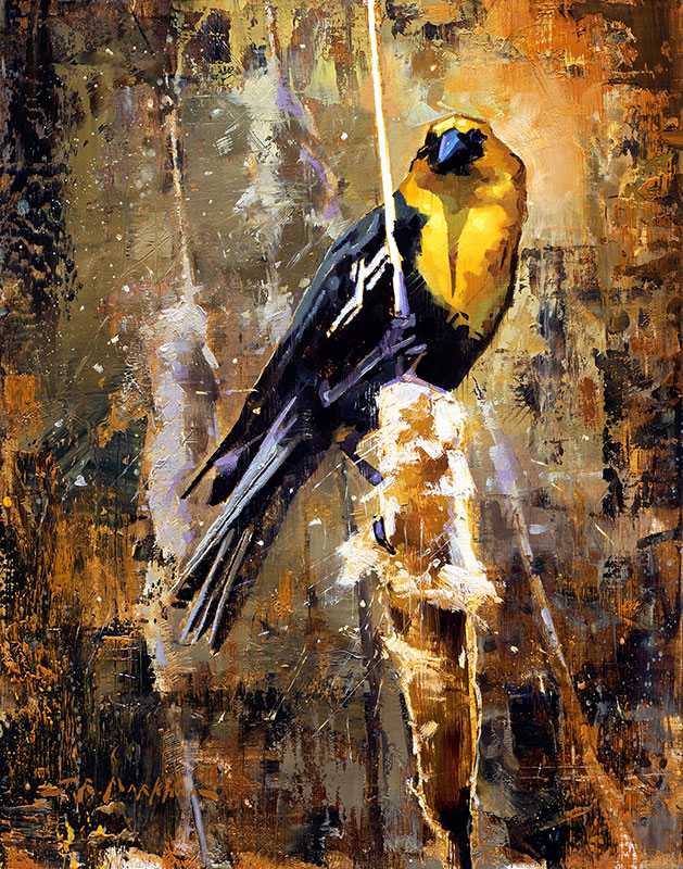 Marsh Melodies - Yellow-Headed Black Bird painting by Jerry Markham artist