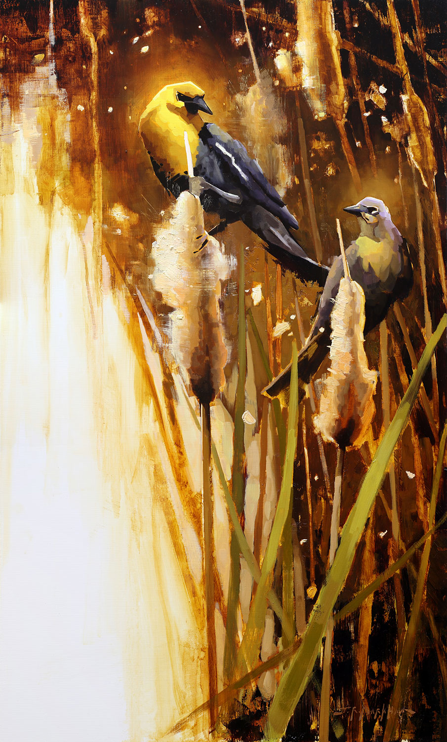 Marsh Romance - painting of yellow-headed black birds by artist Jerry Markham