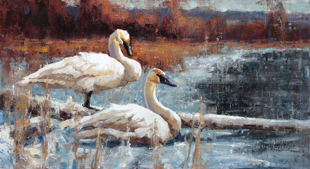 Trumpeter Duet - painting of swans by Jerry Markham